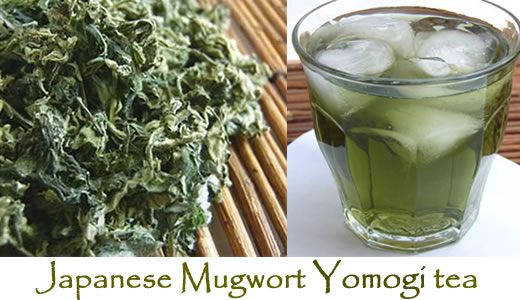 Traditional Japanese Mugwort Yomogi Herbal loose leaf Tea